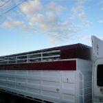 Cattle Truck Tarpaulins